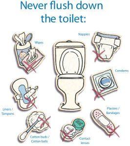 Never Flush Down the Toilet